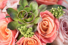 Two golden wedding rings on bouquet on roses and succulent. Wedding rings and flowers concept Royalty Free Stock Photo