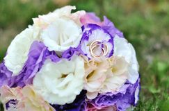 Two Golden Wedding Rings on flowers. Macro shot Royalty Free Stock Images