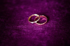 Wedding rings close up Stock Photography