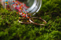 Two golden wedding rings on moss Royalty Free Stock Images