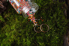 Two golden wedding rings on moss Stock Image