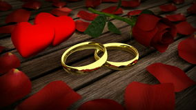Two golden wedding rings and red rose with petals. On wooden table stock video