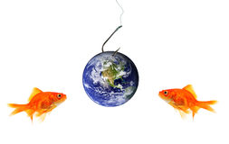 Two goldfish looking at planet earth as bait Stock Image