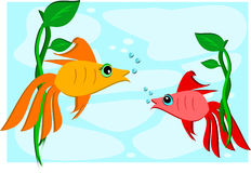 Two Goldfish and Plants Royalty Free Stock Photo