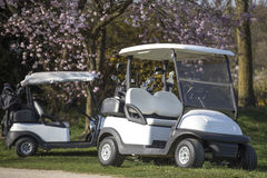 Two golf carts Stock Photography