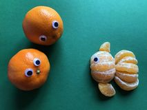 Creative fruit concept, google eyed oranges royalty free stock photos