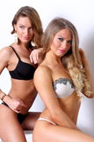 Two gorgeous girl together in lingerie Stock Photos