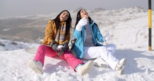 Two gorgeous laughing young woman in snow stock video