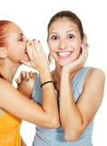 Two gossiping girls. Portrait of two beautiful gossiping girls against white background stock photo