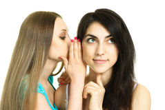 Two gossiping women. Two young gossiping women isolated against white background stock image