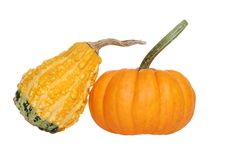 Two gourds Stock Photography