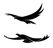 Two graceful flying birds royalty free illustration