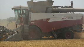 Two grain harvester go one by one on the edge of a wheat field. Harvesting . stock video footage