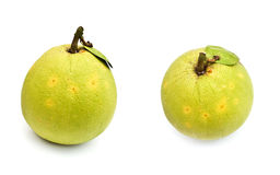 Two grapefruit isolated Stock Photos