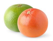 Two grapefruits Stock Photo