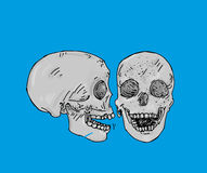 Two gray colored skulls a profile and facing human bones Royalty Free Stock Photo