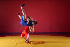 Two young man  wrestlers. Two greco-roman  wrestlers in red and blue uniform wrestling  on a yellow wrestling carpet in the gym. Young men grappling Royalty Free Stock Photo