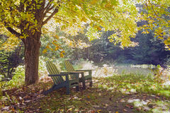 Two Green Adirondack Chairs Under A Maple Tree Stock Image