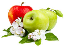 Two Green Apple and Red Apples Stock Image