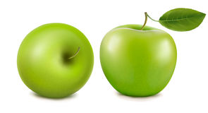 Two green apples. Stock Photos