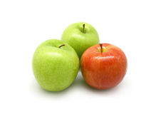 Two green apples and one red apple Royalty Free Stock Image