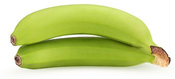 Two green bananas Royalty Free Stock Photography