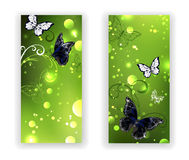 Two green banner with butterflies Royalty Free Stock Photography