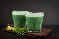 Two green barley grass shots. With blades of young barley on a black background Royalty Free Stock Photos
