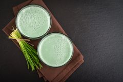 Two green barley grass shots. With blades of young barley on a black background, top view Stock Image