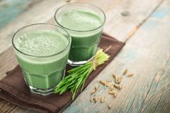 Two green barley grass shots. With blades of young barley on a wooden background Royalty Free Stock Photo