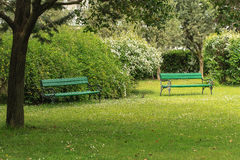 Two green. Benches in the park Royalty Free Stock Photography
