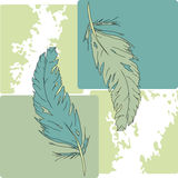 Two green and blue feathers Stock Photos