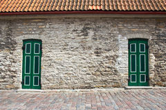 Two Green Doors Royalty Free Stock Images