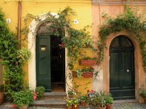 Two green doors in Tuscania Royalty Free Stock Photography