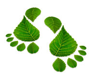 Two green footprints isolated on white Stock Photo