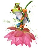Two green frogs sitting on a flower watercolor drawing stock illustration