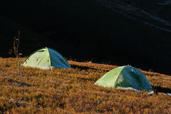 Two green frost camping tent on sunlight of mountains. Stock Image