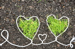 Two green heart Stock Photo