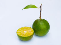 A  two green  lemon. On white background Royalty Free Stock Images