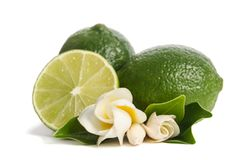 Two green limes with half of  juicy lime and beautifull flower Stock Photography