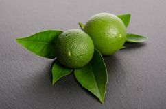 Two green limes with leaves on gray background Stock Images