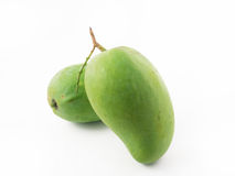 Two Green Mango. On white background royalty free stock photos