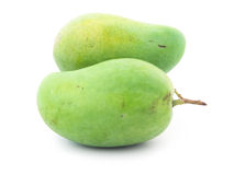 Two Green Mango. On white background stock photo