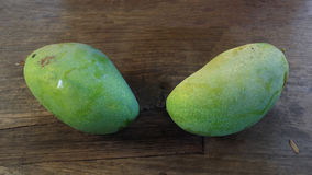 Two green mangoes Stock Photos