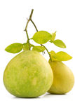 Two Green pomelo fruit on white Royalty Free Stock Photo