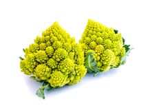 Two green romanesco cauliflowers isolated on white background stock photography