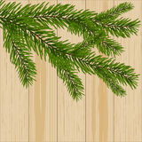 Two green spruce branches on the background of wood illustration. Two green spruce branches on the background of wood. vector illustration Royalty Free Stock Photography