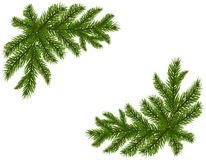 Two green spruce branches realistic. Placed in the corners. Fir branches. Isolated on white background. Christmas. Vector illustration Royalty Free Stock Images