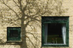 Two green windows Royalty Free Stock Photography