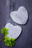 Two grey heart shaped rocks with some shamrocks on a tile background. Two grey heart shaped rocks with  shamrocks on a tile background Royalty Free Stock Image